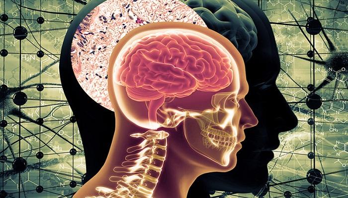 अल्जाइमर का खतरा बढ़ा- जानिये इस बीमारी के लक्षण और बचाव