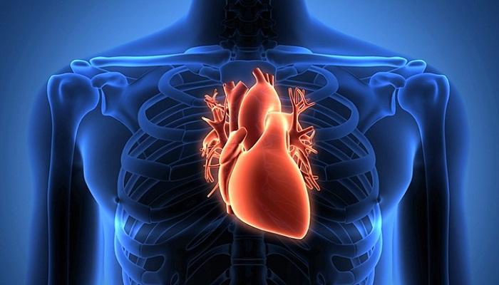 हृदय रोग से निजात पाने के लिए असरदार घरेलु नुस्खे