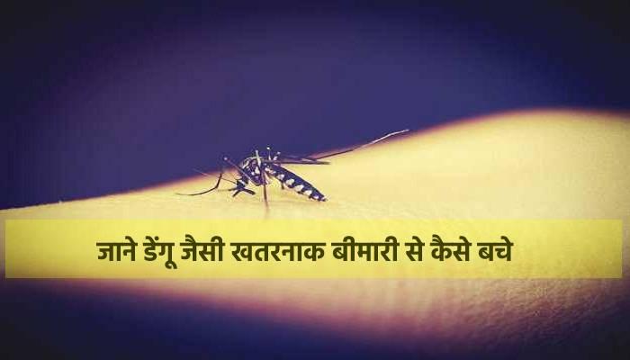 दिल्ली से लेकर यूपी तक डेंगू का हमला, जाने इस खतरनाक बीमारी से कैसे बचे