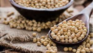 beauty and health benefits of soyabean