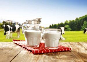 benefits of cow's milk