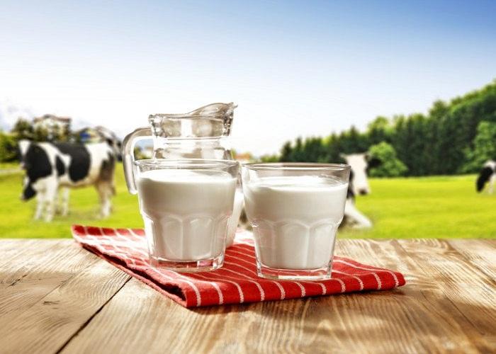 जाने गाय के दूध से होने वाले चमत्कारी लाभ