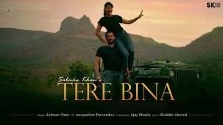 Salman khan – Tere Bina lyrics